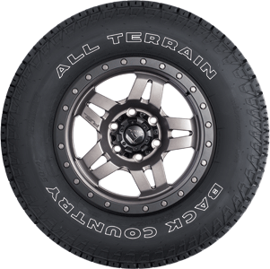Back Country SQ-4 All Terrain Tire - Sidewall View